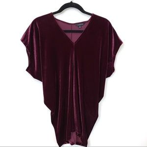 Land's End | Purple Velvet V-Neck Blouse